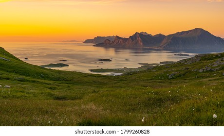 Norway landscape with fjord, mountains, forest in Lofoten , Norway