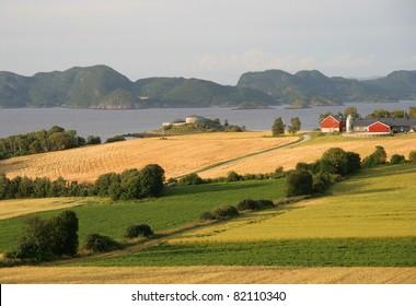 Norwegian farmland by a fjord