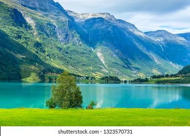 Norwegian landscape with Nordfjord fjord, mountain waterfalls, tree in Olden, Norway