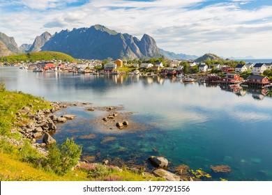Norwegian landscape with Nordfjord fjord, mountains, flowers in lofoten island, Norway
