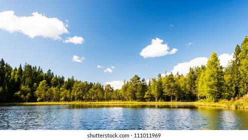Norwegian landscape: Wild forrest and lake