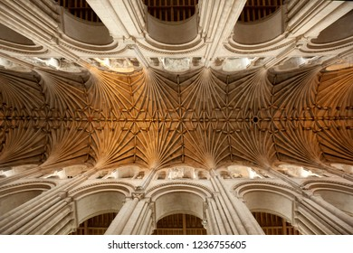 Norwich. England. 11.30.09. The vaulted ceiling of Norwich Cathedral in the city of Norwich in Norfolk in southeast England