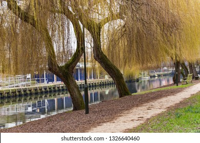 Norwich, Norfolk, England - February 19 2019: Riverside path alongside the River Wensum in the city of Norwich. Quiet, picturesque and somewhere to get away from the hustle and bustle of the shoppers