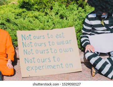 """"""" Not ours to eat. Not ours to wear. Not ours to own. Not ours to experiment on """" phrase drawn on a paper banner stands on the ground in the park near the guy in monkey costume. Animal Rights Protest"""