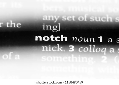 notch word in a dictionary. notch concept.
