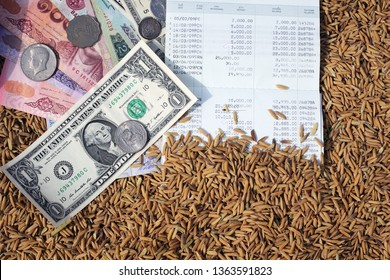 note bank and coin on rice seed background,concept of trading rice