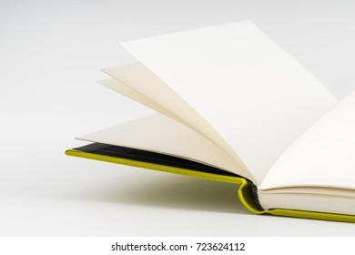 notebook paper green