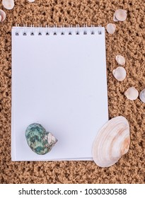 Notepad with pencil and starfish, shell on sand background or on the beach of sea using wallpaper for education photo.Take note of the product for book with paper concept or copy space and refreshing.