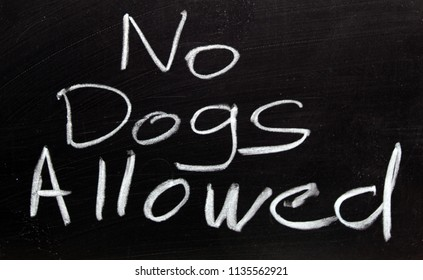 A notice showing that dogs are not allowed, written with chalk on a black board.