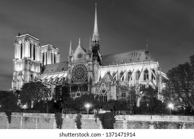 Notre Dame cathedral at night, Paris, France (monchrome version)