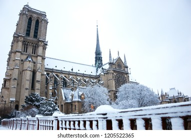 Notre Dame cathedral (Paris, France) covered with snow in rare snowy winter day. View from the bridge.