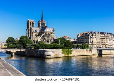 Notre Dame de Paris Cathedral on the Cite Island in the summer morning. Notre-Dame Cathedral  is a medieval catholic cathedral and finest example of french gothic architecture. Paris, France.
