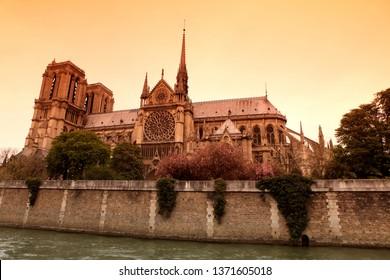 Notre Dame de Paris cathedral, France. Gothic architecture