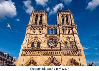 Notre Dame de Paris cathedral with seagulls flying over it, France. Notre Dame de Paris Cathedral, most beautiful Cathedral in Paris. Cathedral Notre Dame de Paris, destroyed in a fire in 2019.