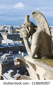 Notre Dame Paris France gargoyles