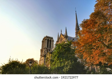 Notre-Dame  cathedral with autumn leaves in paris