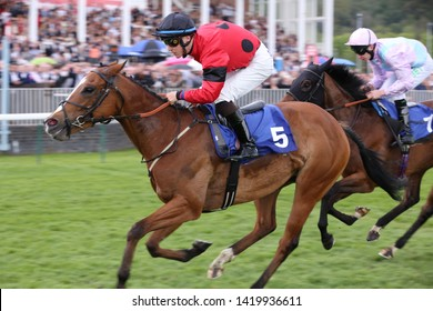 NOTTINGHAM RACECOURSE, NOTTINGHAM, UK : 11 MAY 2019 : Racehorse Peggie Sue ridden by Toby Eley wins the 5f Handicap at Nottingham Races