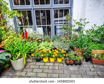NOTTINGHAM, UK -  JULY 15, 2019:  View of flowers in a courtyard behind Pelham Street, Nottingham, Nottinghamshire, England, UK,