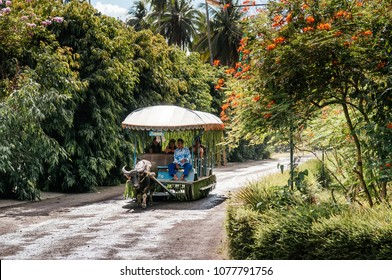 NOV 24, 2012 San Pablo, Philippines : Carabao cart ride or buffalo cart at Villa Escudero, Tiaong, Quezon
