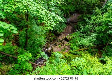 Nova Rasovna sinkhole, or estavelle, near Ostrov u Machochy, Moravian Karst, Czech Republic - Shutterstock ID 1872990496