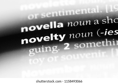 novelty word in a dictionary. novelty concept.