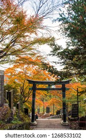 November 10, 2018 - Tokyo, Japan - Mitake, Tokyo-Japan, The romatic autumn scenry on the Mitake Mountain, the people is soming here for hiking trip and visit/pray respect to the Musashi Mitake Shrine