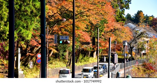 November 15, 2017 - Nikko, Japan, red leaves and maple during autumn