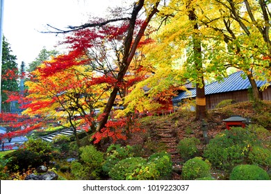 November 15, 2017 - Red leaves and maple during Autumn at area around Rinnoji temple in Nikko, Tochigi Prefecture, Japan