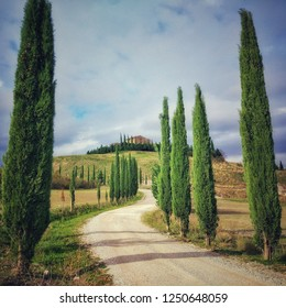 November 8, 2018, Val D'Orcia Valley, Tuscany, Italy: a typical winding road with cypress trees typical of Tuscany