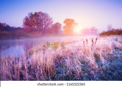 November landscape. Autumn morning with colorful trees and hoarfrost on the ground. Fall dawn.