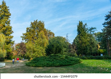 Novi Sad, Serbia - October 28, 2019: Danube Park or (Serbian: Dunavski Park) is an urban park in the downtown of Novi Sad. Formed in 1895, it is protected and is one of the symbols of the city.