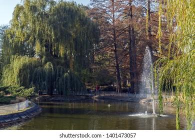 NOVI SAD, VOJVODINA, SERBIA - NOVEMBER 11, 2018: Danube Park at the center of the City of Novi Sad, Vojvodina, Serbia