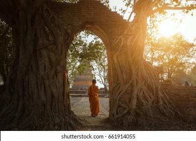 Novice monk at Ayutthaya historical park in Ayutthaya province of Thailand.