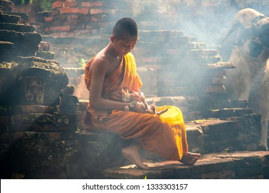 Novice monk religion buddhims Thai concept. Asia novice monk sitting in the temple Ayutthaya province of Thailand.