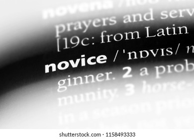 novice word in a dictionary. novice concept.