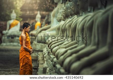 Novices monk vipassana meditation