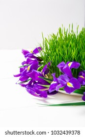Novruz concept with green semeni wheat grass, lilac purple iris flowers, dry fruits and nuts with silk scarf on white wooden table background, nooruz eastern new year spring celebration copy space