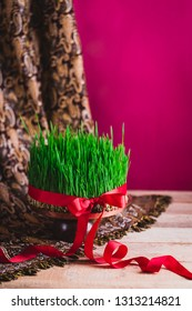 Novruz green fresh semeni samani sabzi wheat grass on vintage plate decorated with red satin ribbon against dark pink or red background on national style table cloth, spring celebration in Azerbaijan