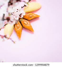 Novruz traditional Azerbaijan pastry shekerbura and pakhlava, beautiful tiny apricot or cherry blossoms for spring equinox celebration on pink background, flat lay top view copy space for text