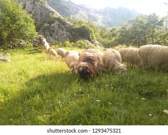 NP Prokletije mountains. Montenegro-Albanian border