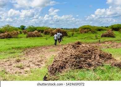 Nsanje/Malawi - April 18 2019: men walk over a saturated field in Malawi that has been cleared of its food crop by flooding after cyclone Idai the field shows debris carried by the flooding river