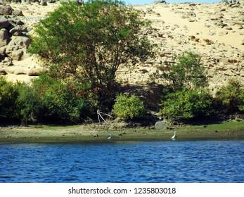 Nuba - river Nile Egypt