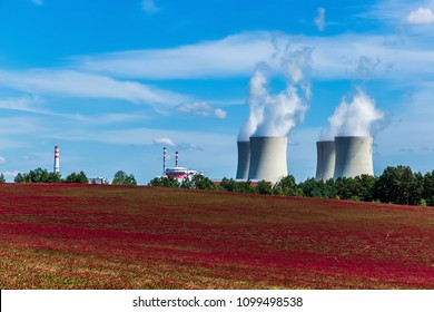 Nuclear power plant Temelin and clover field in Czech Republic. Europe.