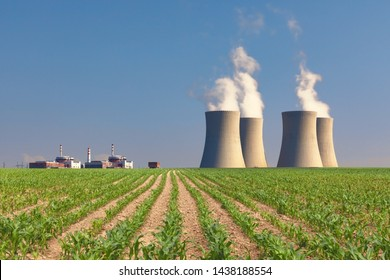 Nuclear power plant Temelin with green corn field. Czech Republic.