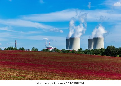 Nuclear power plant in village Temelin and clover field in Czech Republic. Europe.
