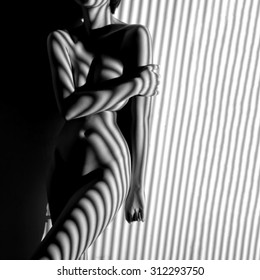 nude woman  black and white line zebra stripe
