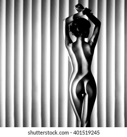 nude woman sexy Artistic black and white line photo