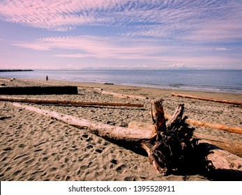 Nudist Wreck Beach during sunny day in Vancouver, British Columbia, Canada