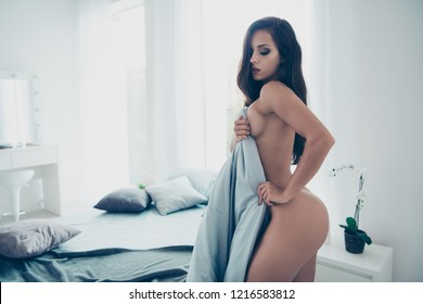 Nudity romance perfect figure. Profile side view photo of gorgeous nice stunning adorable good-looking lady without underwear close eyes cover body with blanket in modern light interior room