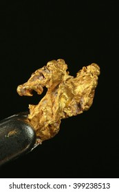 Nugget of gold. This is hand-panned gold from the Lemmenjoki national park in finnish Lapland.